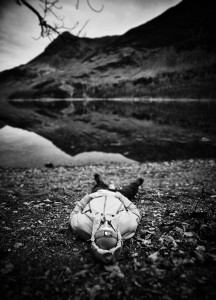 Buttermere Reflections (3)