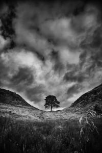 Northumbria_4